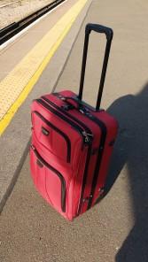 Chris's suitcase.jpeg